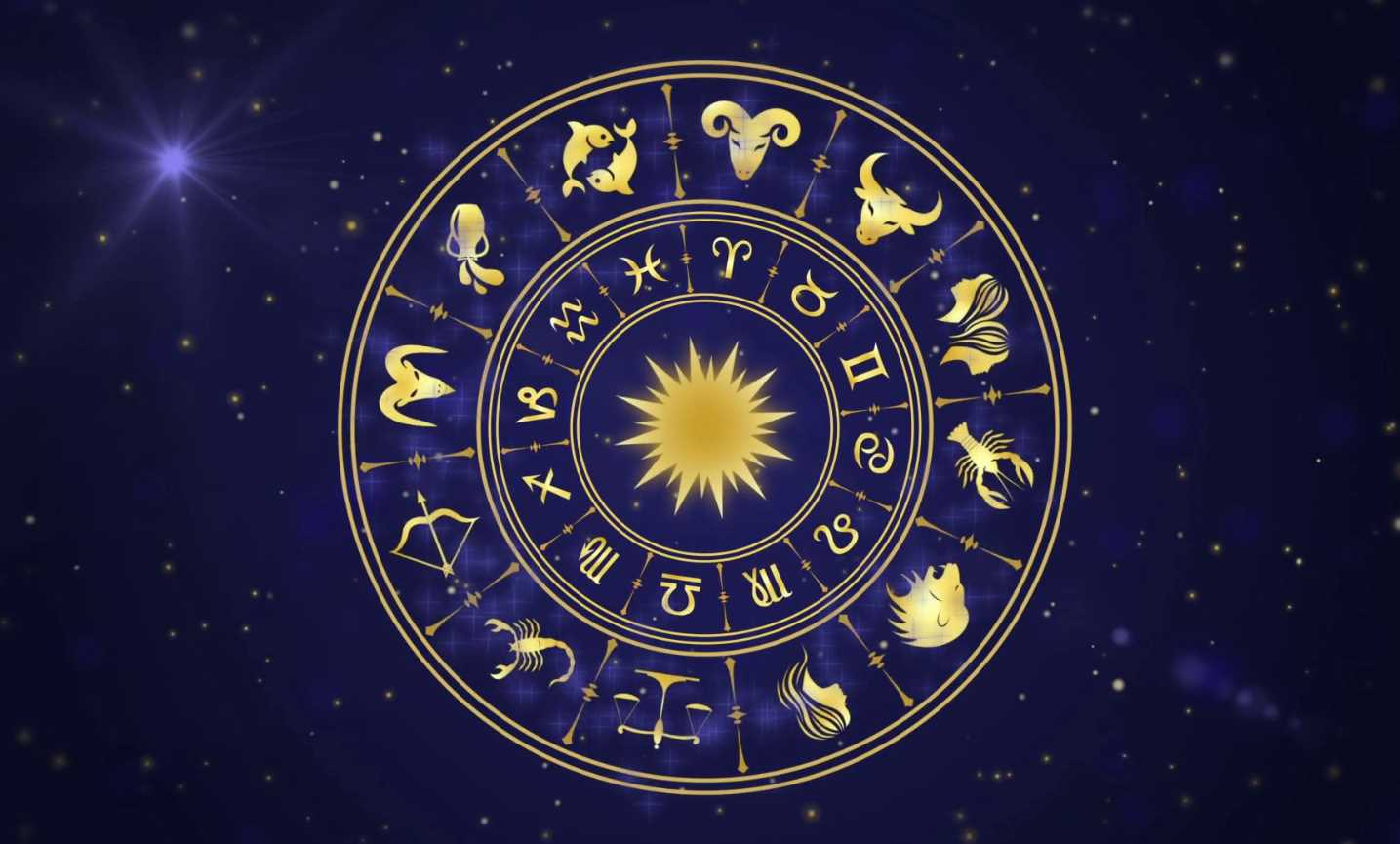 Pin by Victor on ♌️ LEO♌️ in 2020 | Birthday personality  |Horoscop 14 August 2020
